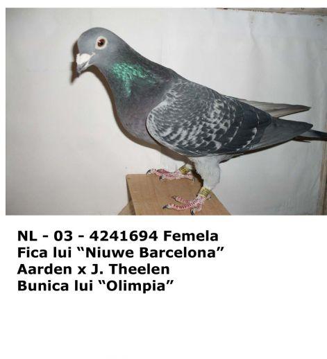 nl_-_03_-_4241694.jpg